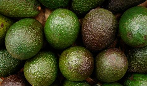 avocado gezond calorieen
